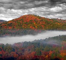 Misty Hills At Beavers Bend by Carolyn  Fletcher