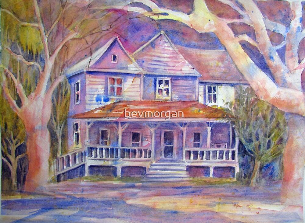 Southern Belle by bevmorgan