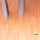 Trees - 20 - Impressions by Yannik Hay
