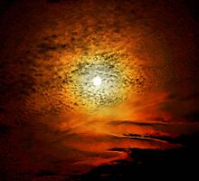 If I Could Rope the Moon by Donnie Voelker