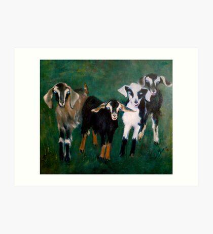 Trouble- Goats Art Print