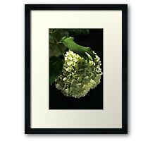 Your Green Glow Framed Print