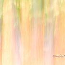 Trees - 5 - Impressions by Yannik Hay