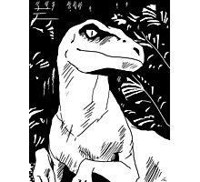 Clever Girl! Photographic Print