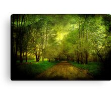 Learning Texture Canvas Print