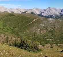 Panoramic wilderness by zumi
