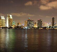San Diego Skyline from the Island of Coronado. 2011 by Igor Pozdnyakov