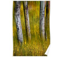 Autumn Aspens Recollections Poster
