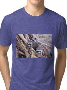 Baby Raccoons Tri-blend T-Shirt