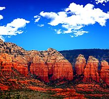 Red Rocks of Sedona by Stephen Forbes