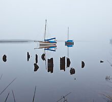 Boats at South Franklin, Tasmania #2 by Chris Cobern