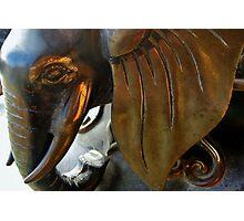 Temple Elephants Photographic Print