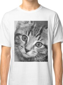 Cher: 11 Week Old Kitten Classic T-Shirt