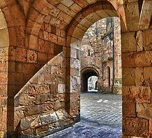 Alnwick Castle Entry by Ian Berry