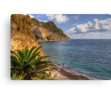 The whole beach to ourselves Canvas Print