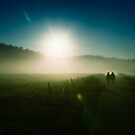 Sun Kissed by Photofreaks