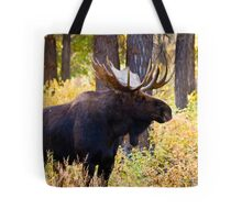 Bull Moose in Fall Foliage Tote Bag