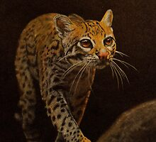 Ocelot Prowl by Andrea Michael