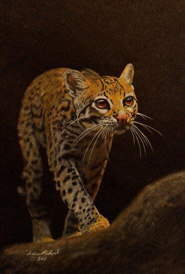 Ocelot Prowl by Andrea Michael