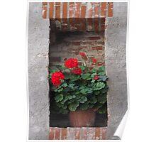 Niche with geranium Poster