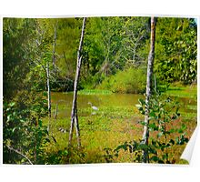 October Pond View By Jonathan Green Poster