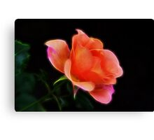 Glorious Rose Canvas Print