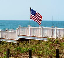 Flag On The Beach by Cynthia48