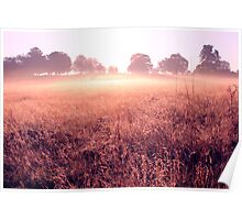 Early Morning Autumn Sunrise Poster
