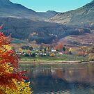 The Colour of Autumn by Lynn Bolt