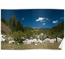 Desolated house on mountain pasture Poster