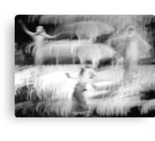 Spirit Dancers © Canvas Print