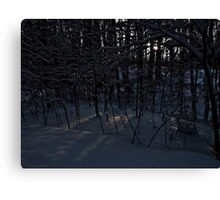 White Christmas Forest Canvas Print