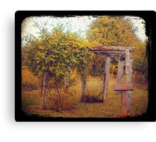 Uwharrie Grape Arbor (TTV) Canvas Print