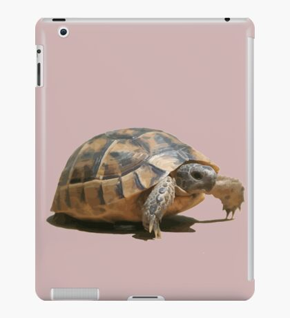Portrait of a Young Wild Tortoise Isolated iPad Case/Skin