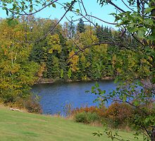 Autumn Trees Around Lake by lilylens