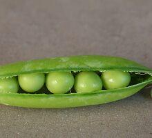 .... like five peas in a pod by BreeDanielle