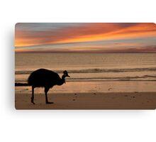 Cassowary Sunset Canvas Print