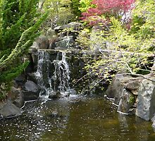Japanese Style Garden and Waterfall by Carol Peck