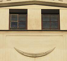 smile by rainbowvortex