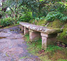 Sandstone Bench by Michael John