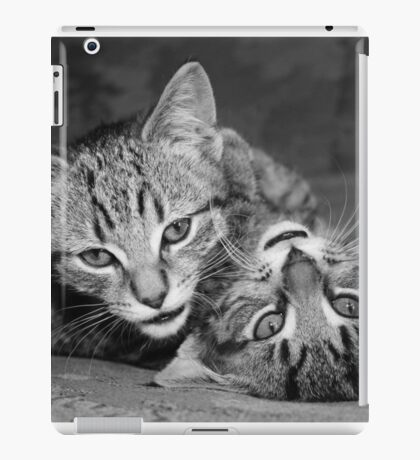 Yin and Yang Kittens iPad Case/Skin