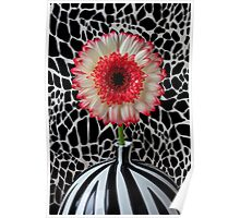 Daisy and graphic vase Poster
