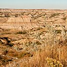 Badlands Of The North by Scott Denny
