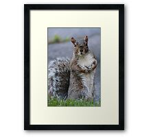 Am I Going to Be Famous? Framed Print
