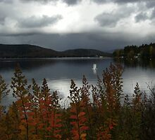Lake  Archambault by Elfriede Fulda