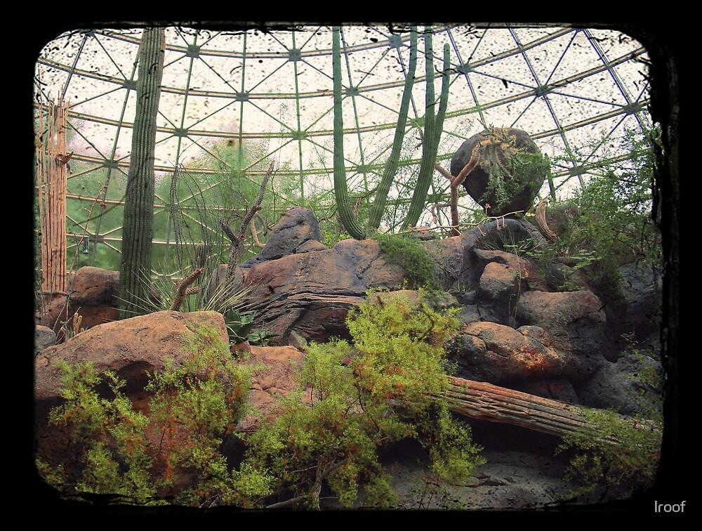 Indoor Desert Habitat (TTV) by lroof