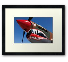 Flying tiger plane Framed Print