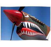 Flying tiger plane Poster
