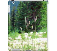 Berthoud Pass Tall Grass  iPad Case/Skin