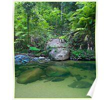 Nyletta Creek, FNQ Poster